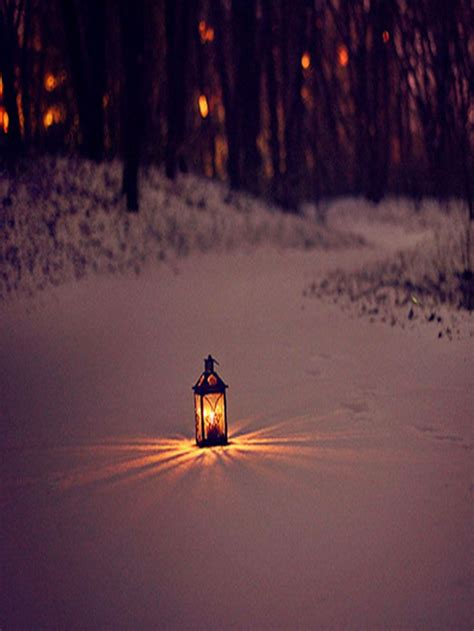 light for walking at night 3240 best snow ice images on pinterest
