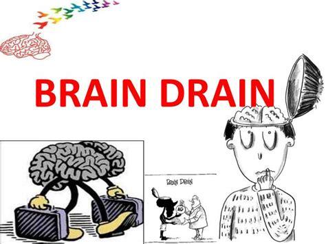 brain drain is better than brain in drain ppt brain drain powerpoint presentation id 2876088