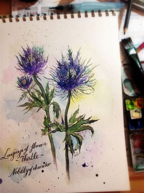thistle tattoo pinterest stylized watercolor of a thistle thistle tattoo