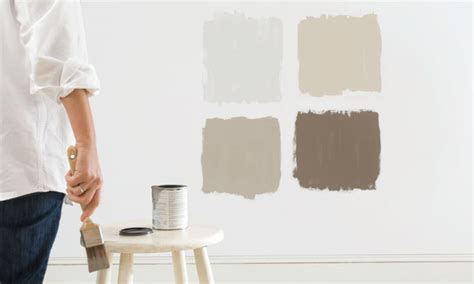 best wall paint best paint buying guide consumer reports