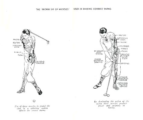 what muscles do you use to swing a bat cure a golf slice power golf good wrists 1898 by h s
