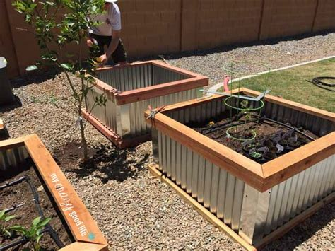vegetable garden boxes diy raised garden beds with corrugated metal