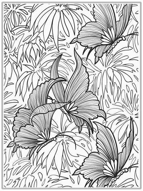 butterfly garden colouring book for adults books coloring pages butterfly realistic coloring pages