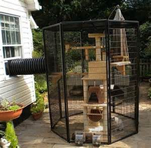 outdoor cat enclosures home design garden