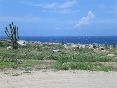 pictures of pictures of aruba aruba photo gallery