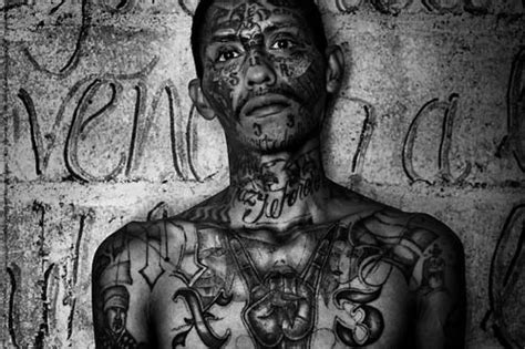 mara salvatrucha tattoos marked for ms 13 18th tattoos