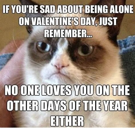 Funny Single Valentines Day Memes - happy valentines day friend funny memes tweets images