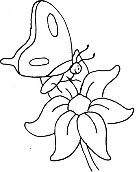 coloring pages of small butterflies coloring pages flowers butterflies coloring home