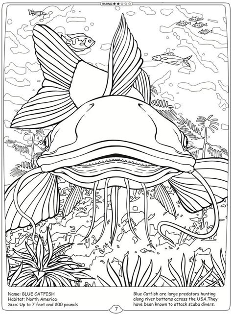 river fish coloring pages coloring pages of pennant coralfish river fish coloring