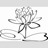 Lotus Flower Black And White Drawing | 600 x 426 png 45kB