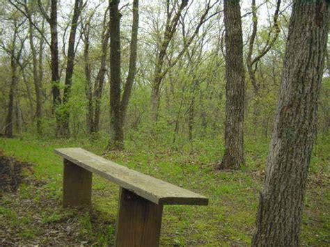 blue bench trails plants p penstemon page 15