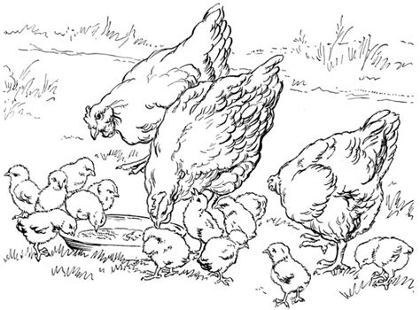 free coloring pages of farm background