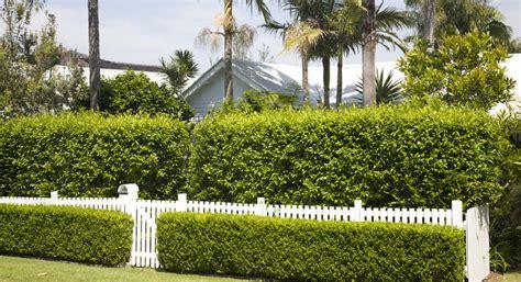 inspirasi desain pagar rumah terbaik  ditiru