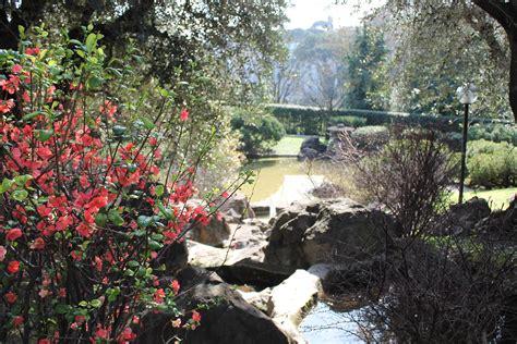 roma giardini istituto giapponese di cultura 187 giardino