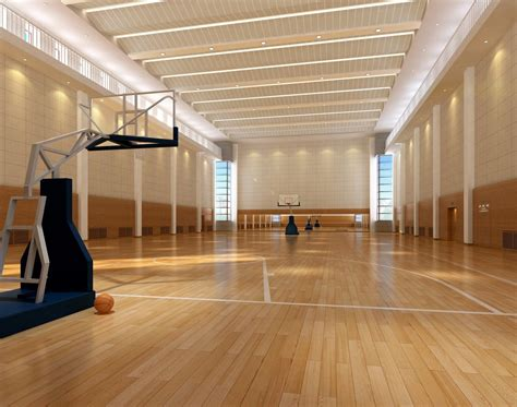 home basketball court design gooosen