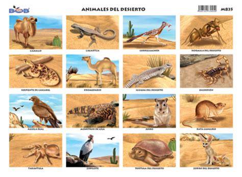 imagenes de animales del desierto animales del desierto 16 fig