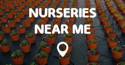 landscaping stores near me find your local service