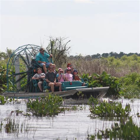 everglades airboat tours fort myers top 10 tours for naples bonita springs marco island