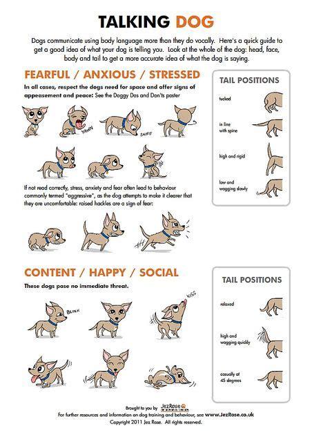 pattern of body language 454 best pets images on pinterest cross stitch