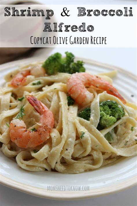 Olive Garden Seafood Alfredo by Copycat Olive Garden Alfredo Sauce Recipe Shrimp And Broccoli Alfredo