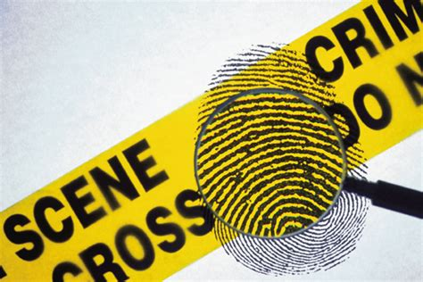 Prepare Resume Online by Criminology Career Option In Criminology Careers In