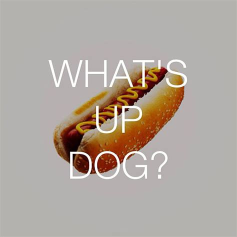 talking food  pun fueled instagram project foodiggity