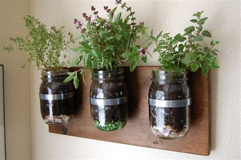 Wall Mounted Herb Planter by Rustic Herb Garden Glass Jars Wall Hanging By