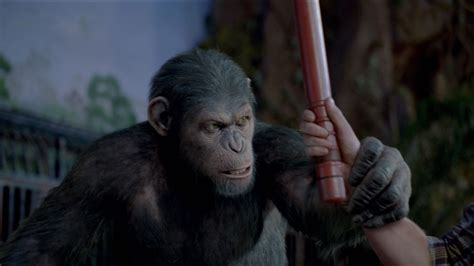 planet of the apes images rise of the planet of the apes 2 sequel release date