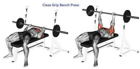 close grip barbell bench inner chest workout 3 exercises to build inner pecs for