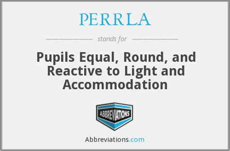 Pupils Equal Reactive To Light And Accommodation perrla pupils equal and reactive to light and