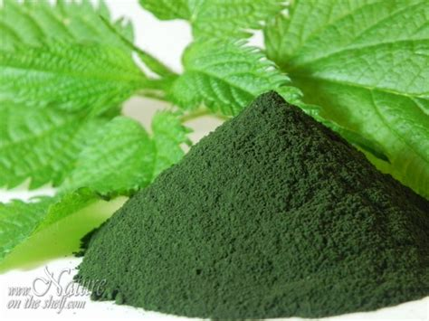 what gives plants their green color chlorophyll powder