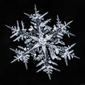 Don komarechka quot the snowflake quot ultra high resolution snowflake
