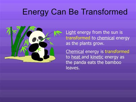 how is light energy converted into chemical energy during photosynthesis energy what every 5th grader should