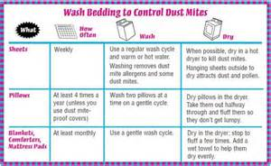 how to get rid of bed mites how to get rid of dust mites in bedroom how to