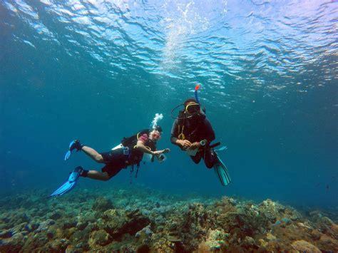 Metode Aborsi Bali Guide Selam Lokal Bali Belajar Metode Coralwatch Aplikasi