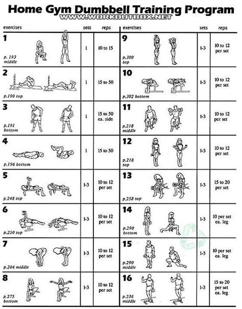 best 25 dumbbell workout program ideas on
