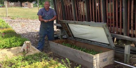 backyard growers 100 backyard growers green city growers urban