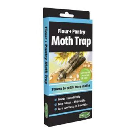 Flour And Pantry Moth Trap by Contech Flour And Pantry Moth Trap 300000127 The Home Depot