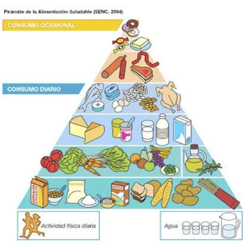 alimentare sinonimo 191 la palabra dieta 243 nimo de alimentaci 243 n equilibrada