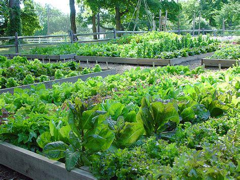Kitchen Garden Farming In Kenya Kitchen Garden At Fordhook Farm It S Neat That You Can