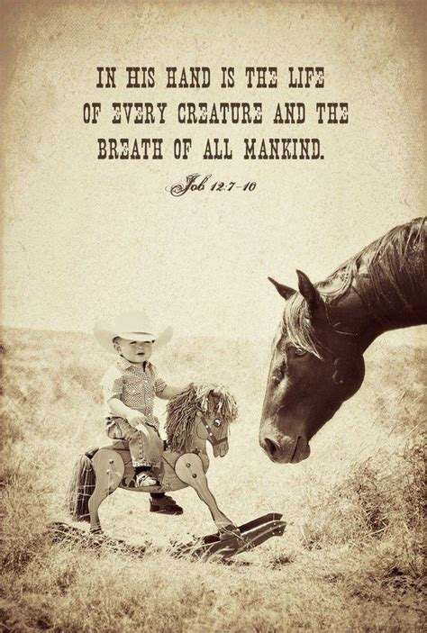 the bad boy cowboy ranch books best 25 cowboy sayings ideas on farm