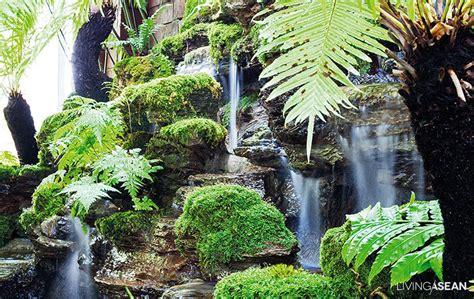 the house of rainforest garden