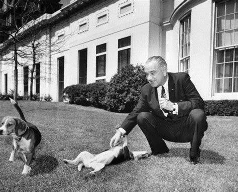 presidential dogs presidential dogs