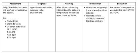 Nursing Informatics Resume Exle
