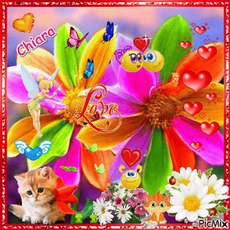 fiori colorati immagini fiori colorati picmix