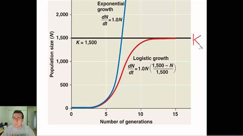 definition pattern of growth population growth patterns youtube