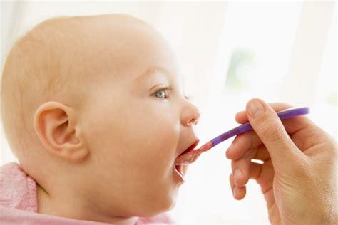 stuhl stillkind babyern 228 hrung der ratgeber f 252 r gesunde und gl 252 ckliche kinder