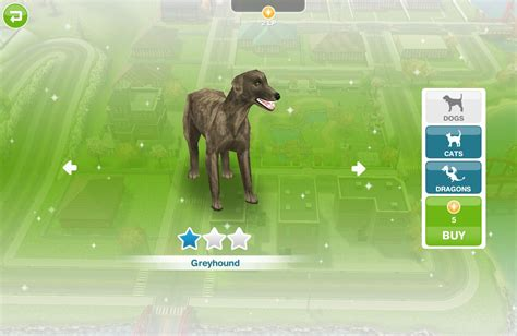 sims freeplay puppy odyssey pets the sims freeplay wiki fandom powered by wikia