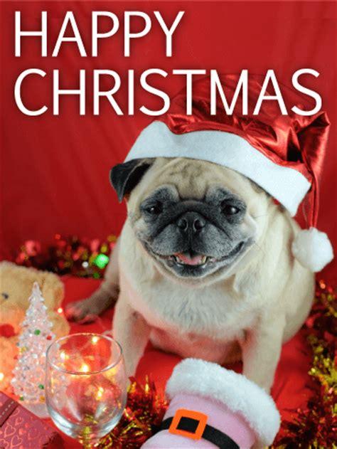 pug merry santa pug merry card birthday greeting cards by davia