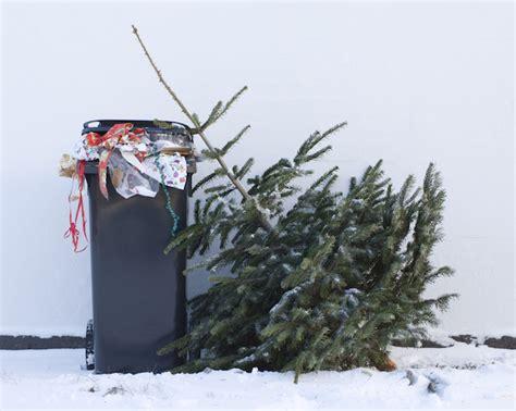 hounslow council announces christmas recycling dates